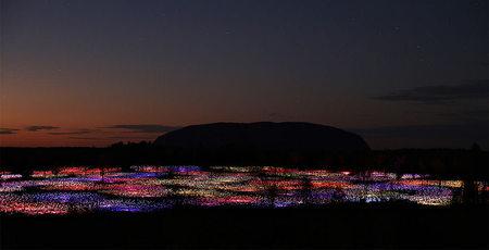 50.000 Işığın Dansı
