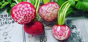 Meyve ve sebzeden sanat